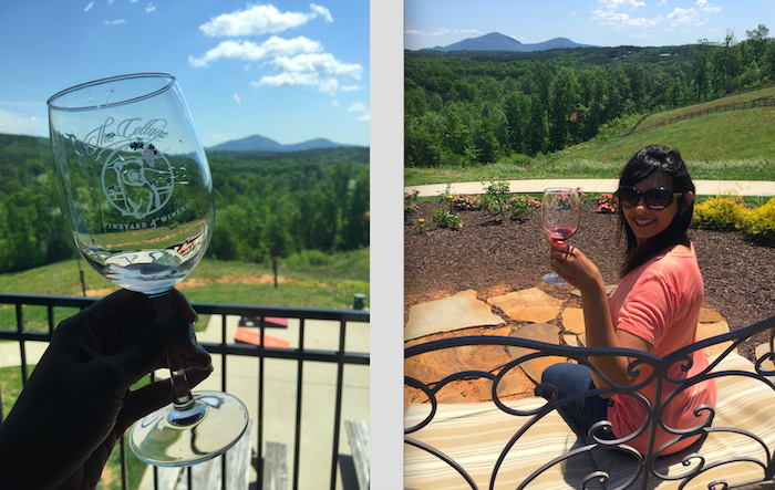 cottage winery in north georgia