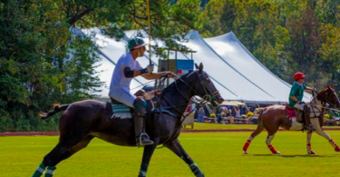 polo in the pines charity