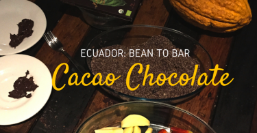 cacao-bean-to-bar-ecuador