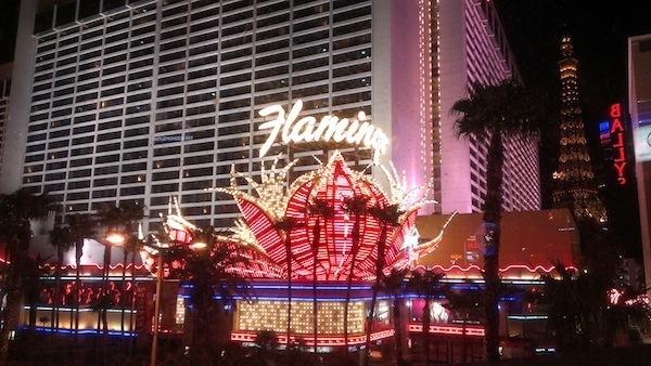 Flamingo-Resort-Las-Vegas-Review
