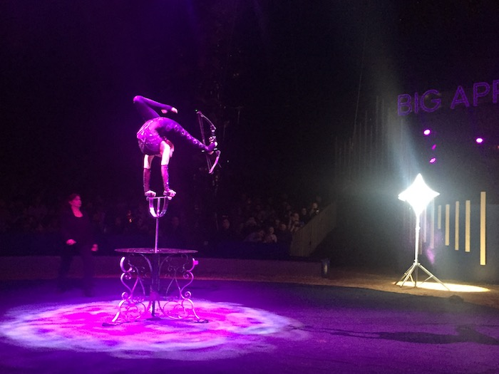 Contortionist at Big Apple Circus