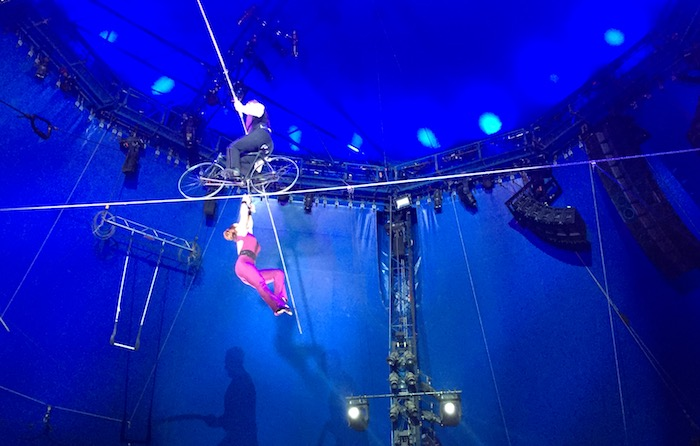circus high wire acts