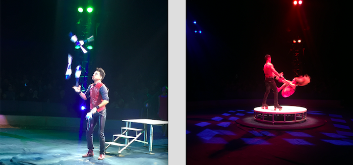 reasons to go to the circus
