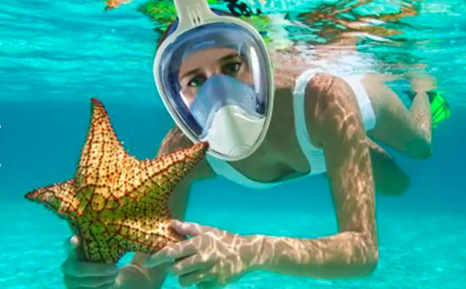 scuba-diving-book-excursion-panama-city-beach